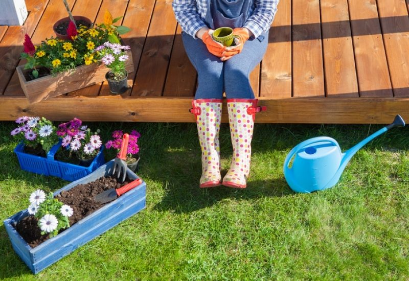 5 Job Questions to Ask Your Lawn Care Service