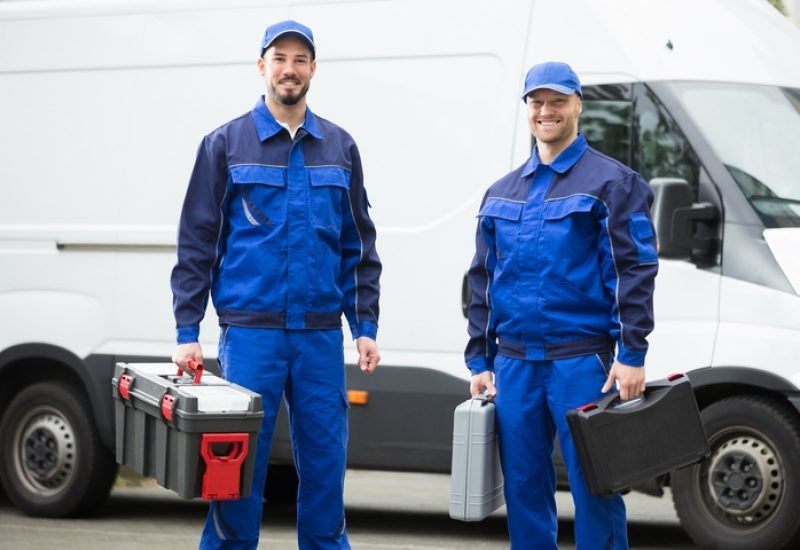 5 Reasons to Call A Qualified Pest Control Team